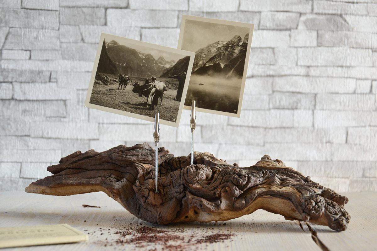 Bilderhalter-krokodilklemmen-wurzel