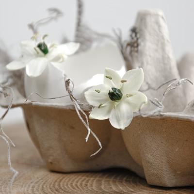 Dekoration | Ideen für Ostern