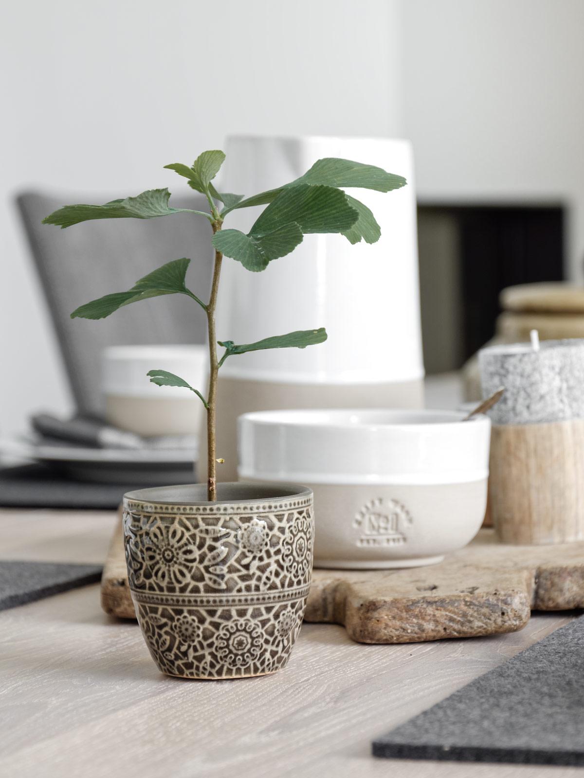 dekoration natur pur auf dem esstisch mxliving. Black Bedroom Furniture Sets. Home Design Ideas