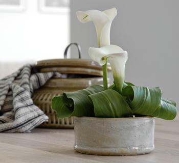 Dekoration   kleines Tischgesteck aus Calla
