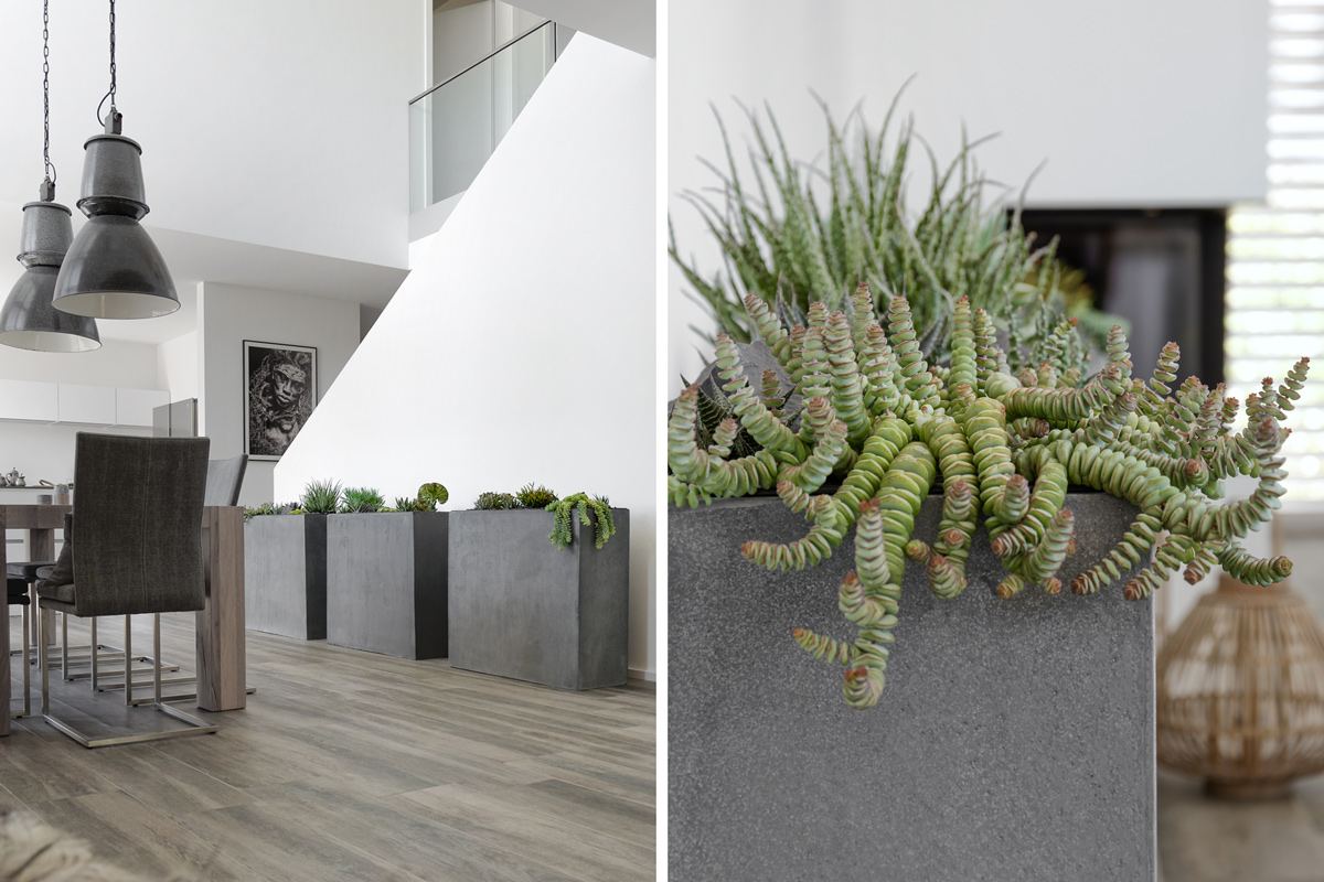 dekoration der neue steingarten im esszimmer und ein gewinnspiel mxliving. Black Bedroom Furniture Sets. Home Design Ideas