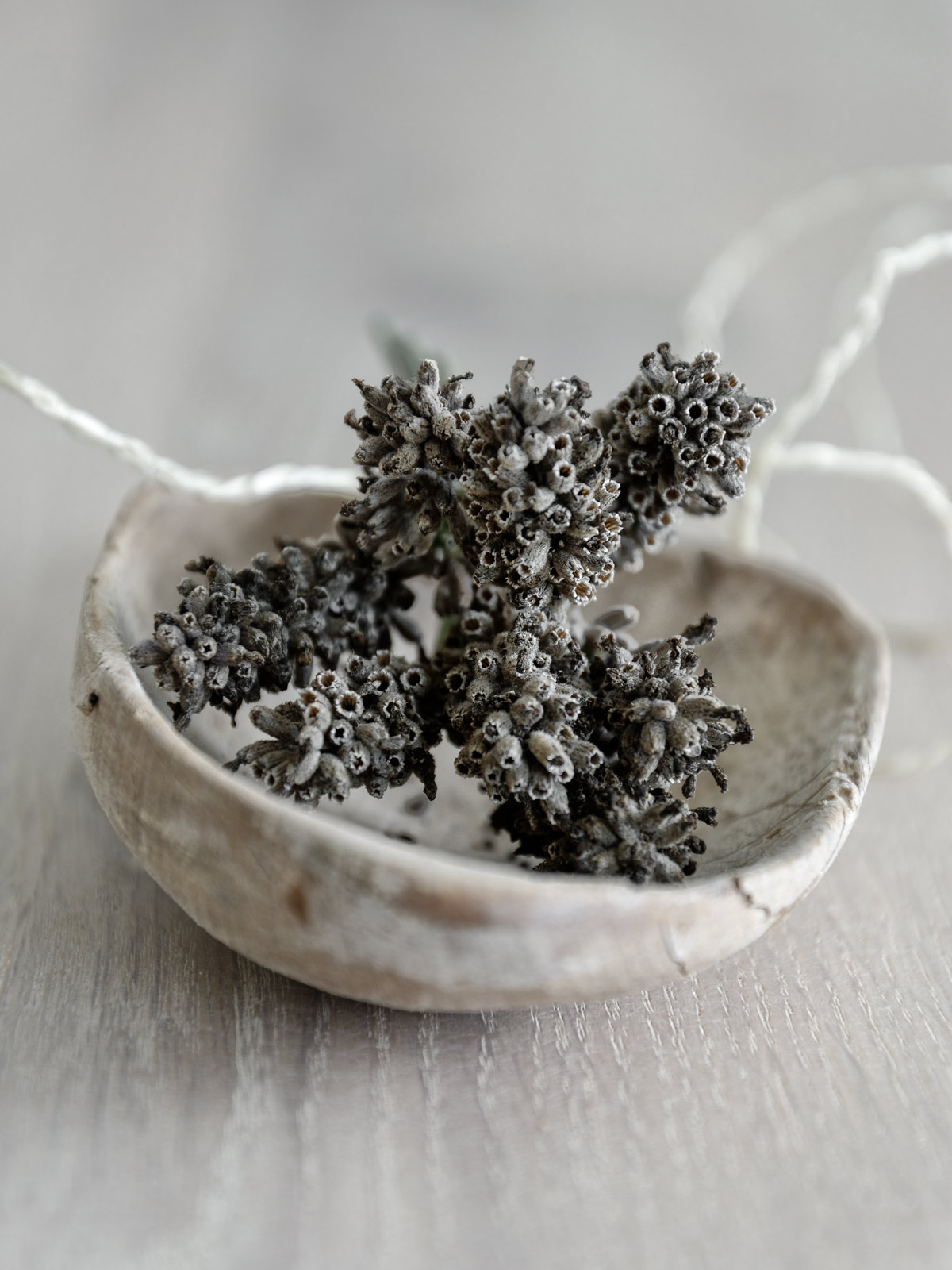 getrockneter-Lavendel