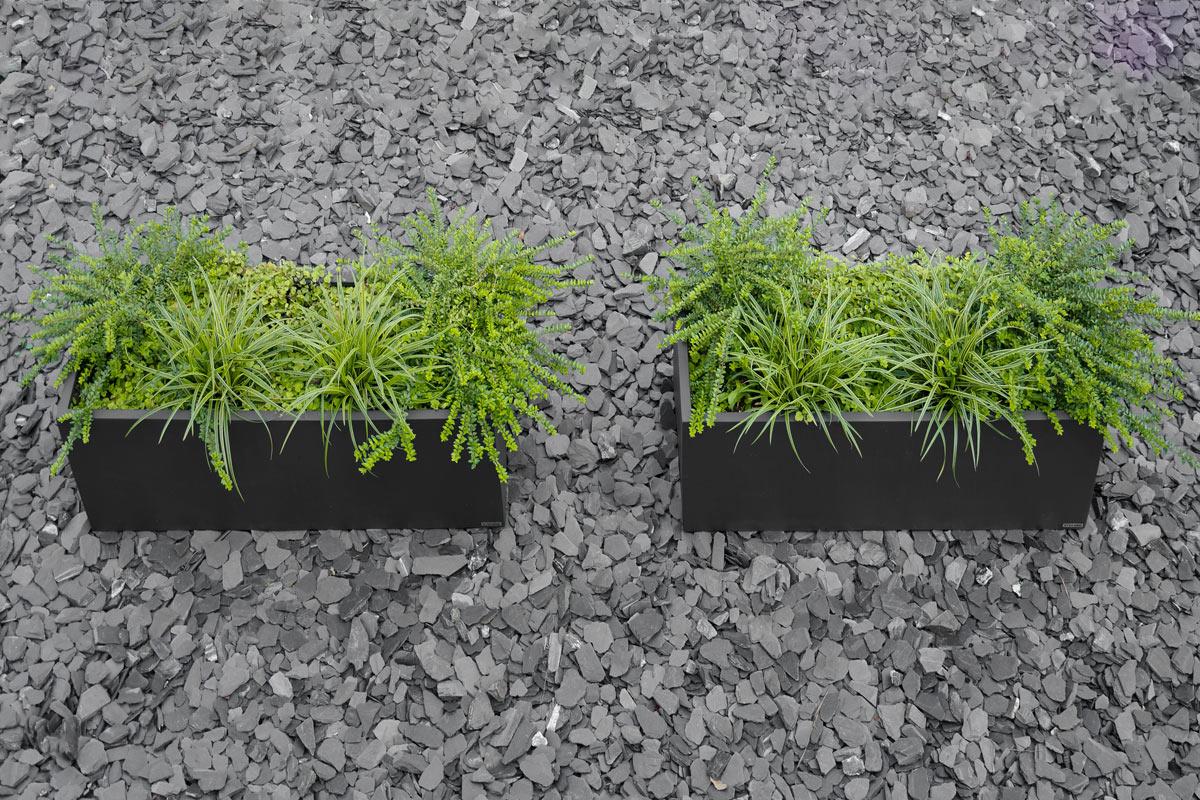 Garten vorgartengestaltung mit pflanzk beln mxliving for Gartengestaltung um einen baum