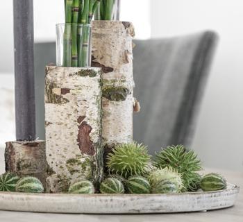 DIY | Vase aus Birkenstämmchen selbermachen
