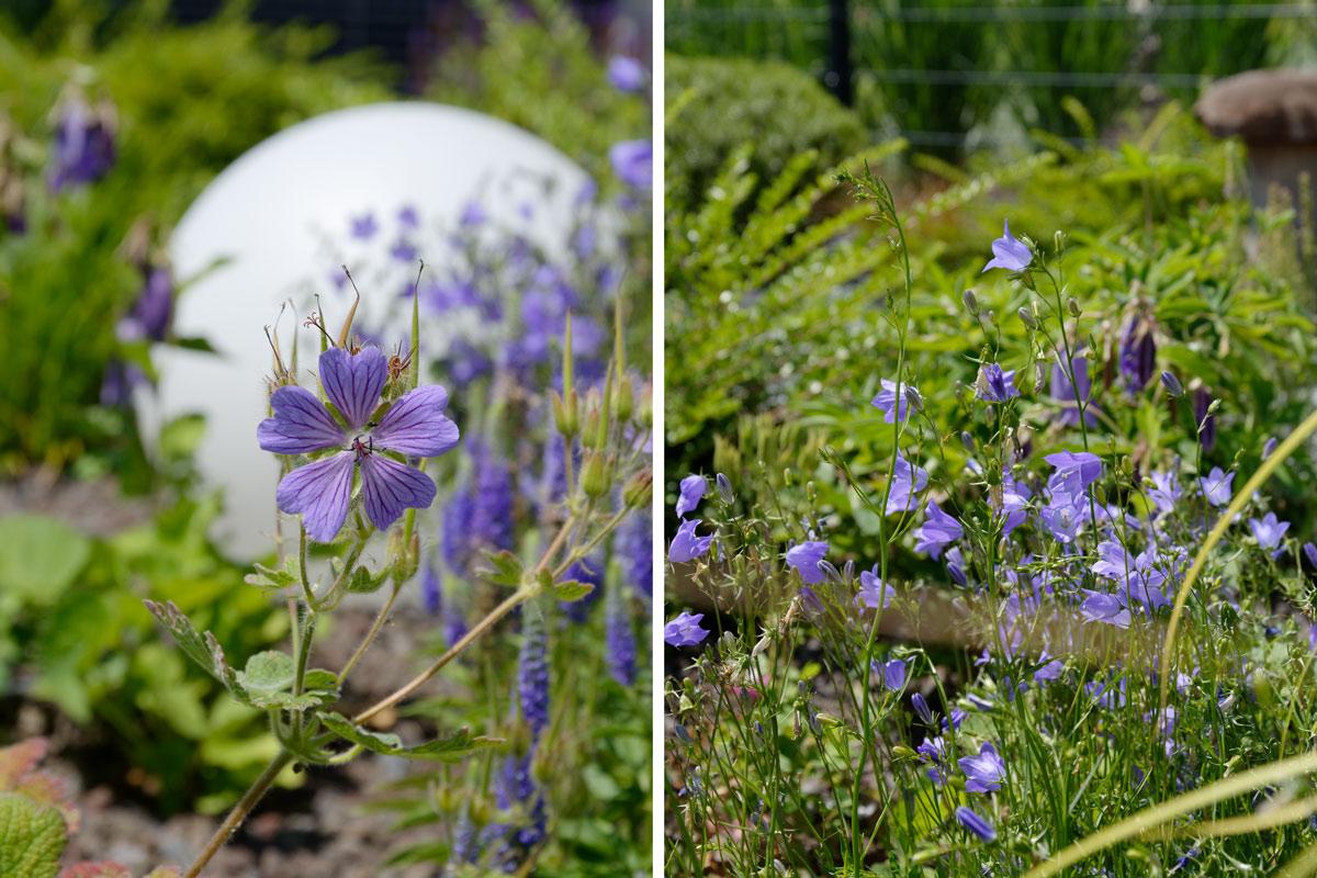 GARTEN | Unser Garten im Juni - mxliving