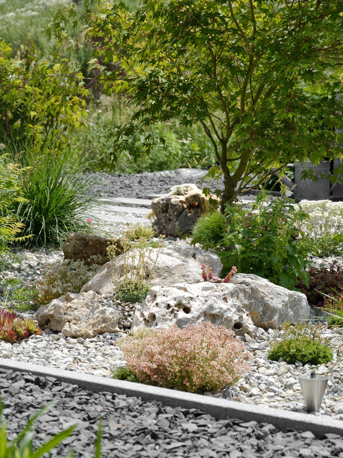 Garten Archive Seite 2 Von 5 Mxliving